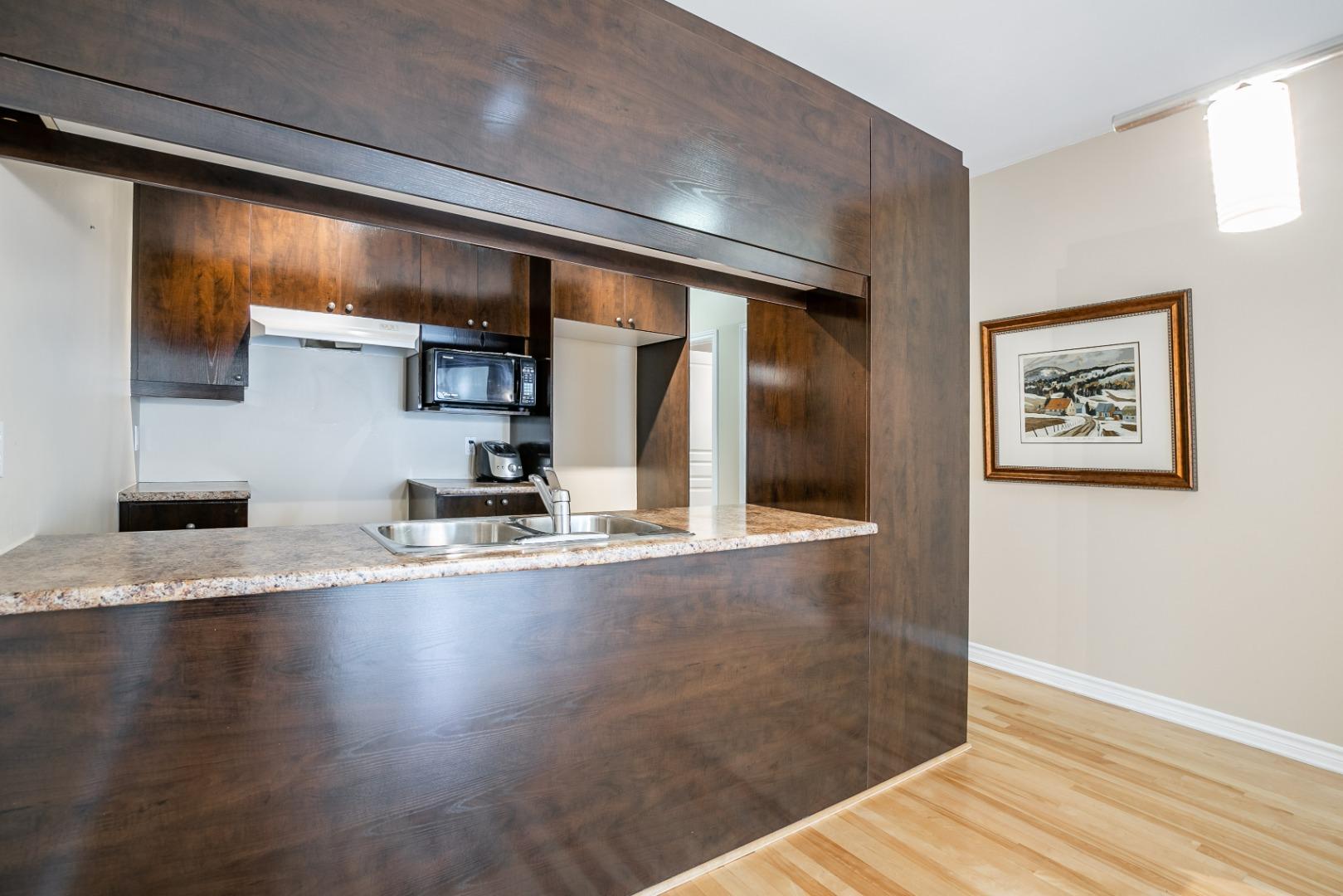 condo a vendre rosemont_montreal- 3860 rue masson_#3_AL-8.jpg