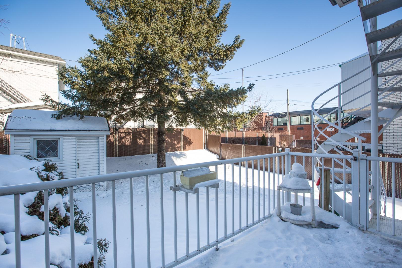 Duplex à vendre Montréal Mercier Hochelaga-Maisonneuve - Cour arrière