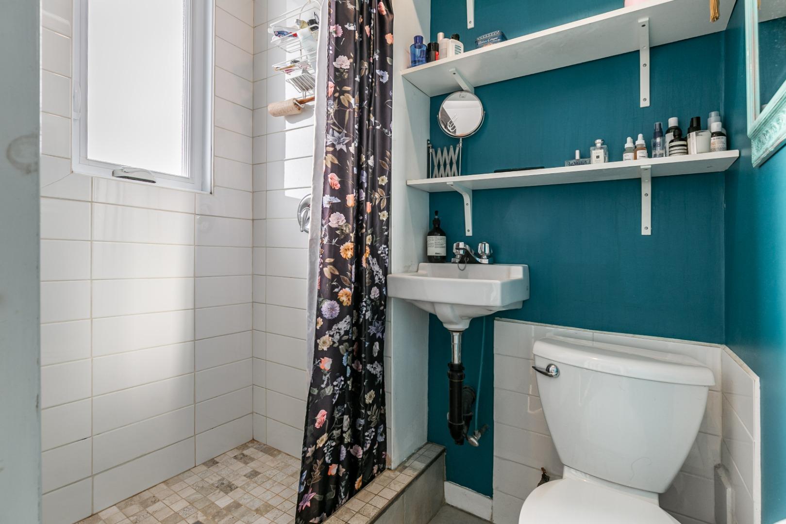 Triplex_for sale_6416_Ave._de_Lorimier_Rosemont_-_montreal-_steve_rouleau_-_AL-24.jpg
