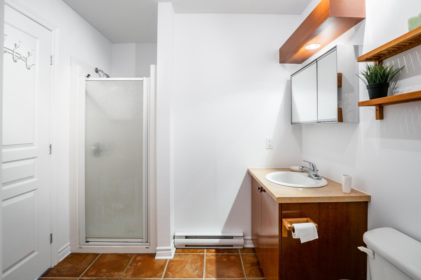 condo a vendre rosemont_montreal- 3860 rue masson_#3_AL-18.jpg