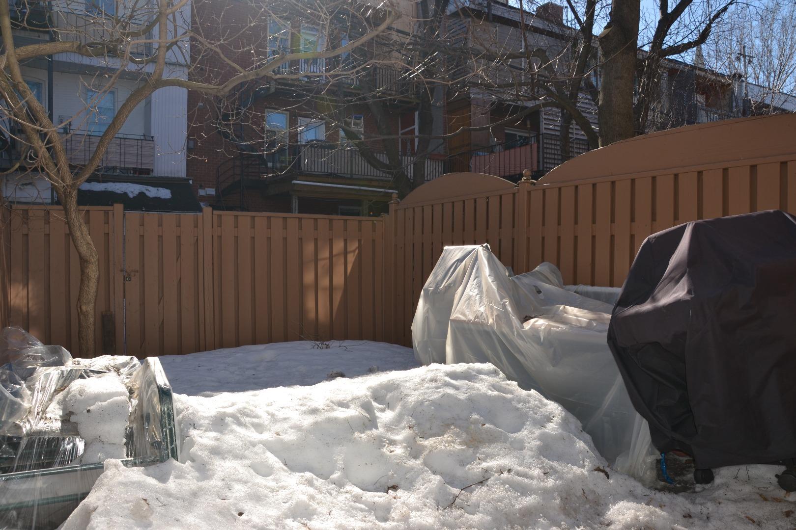 Maison à vendre Montréal Le Plateau Mont-Royal / Mile End - Cour