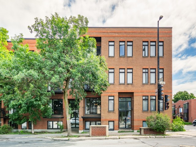 condo a vendre rosemont 3860 rue masson_#3_-_montreal_- Rosemont_steve_rouleau_-_AL-1.jpg