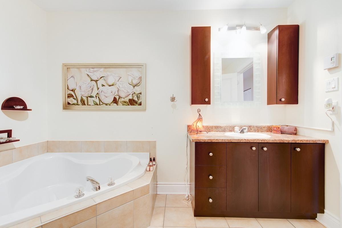 Condo à vendre Montréal Rosemont / La Petite Patrie - Salle de bain